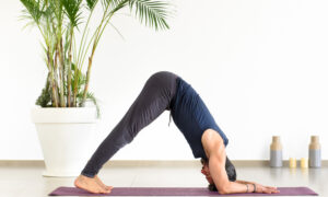 yoga dolphin pose