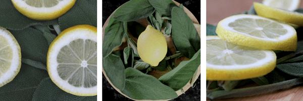Sage and Lemon Tea