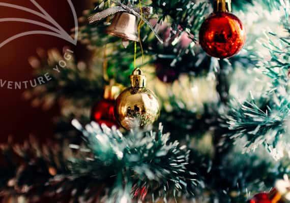 12 Days of Christmas 2016!