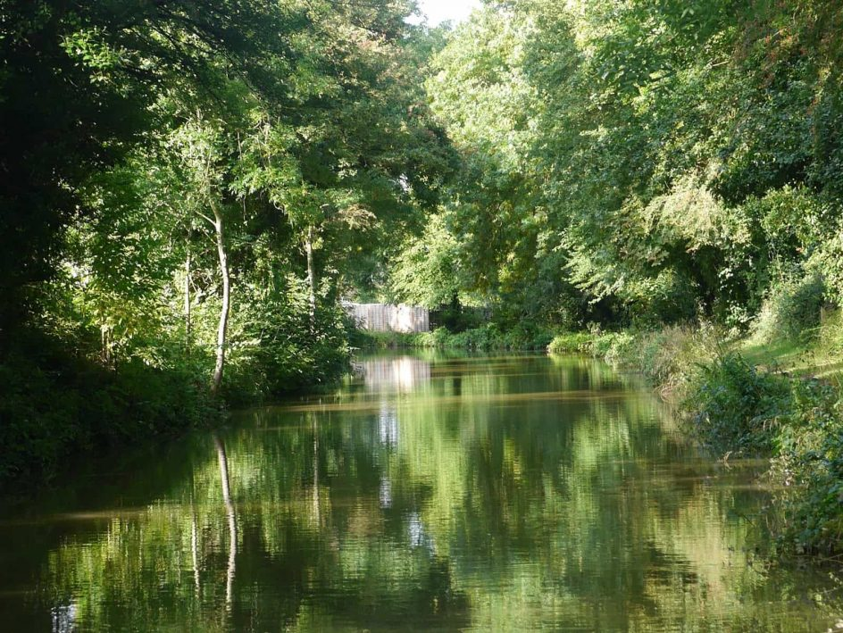 Thrupp Oxford canal with trees