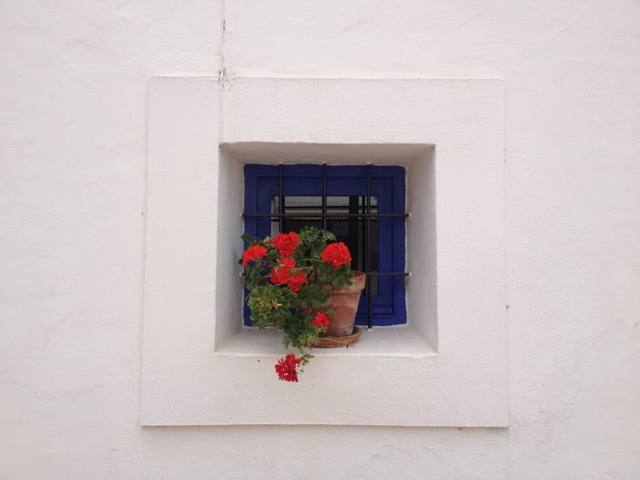 blue window wit white washed walls and red flowers ibiza