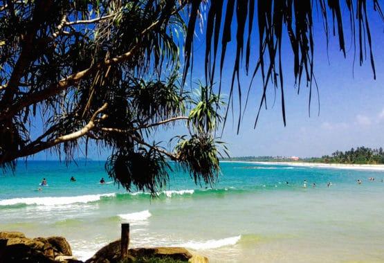 Bentota beach with waves palm trees blue skies