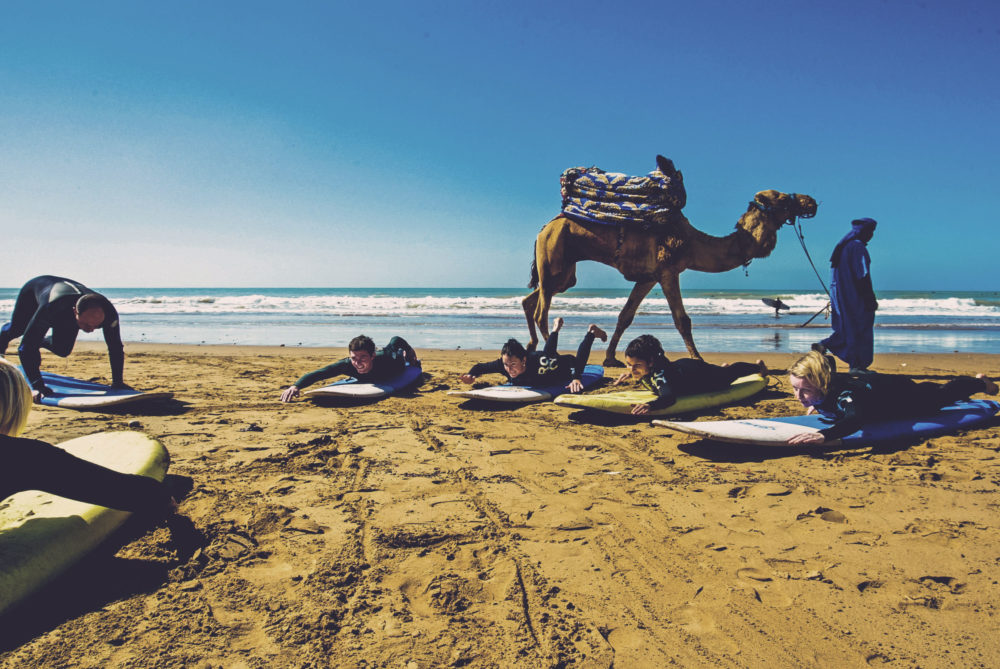 surf coaching on beach and camel walking past