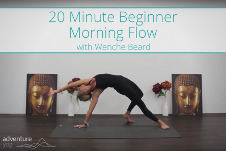 Morning Yoga Flow for Beginners Video