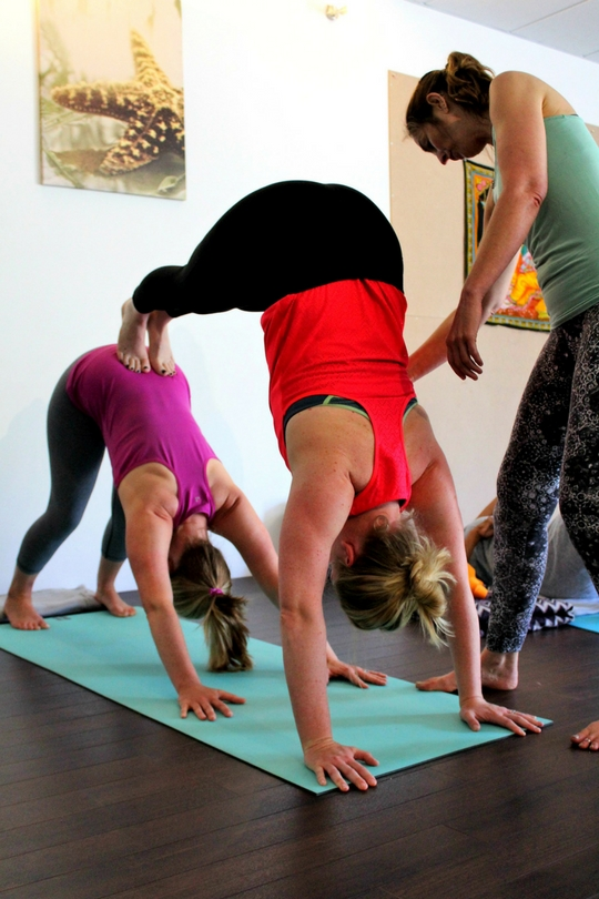 partner yoga downward dog with teacher yoga detox retreat east sussex