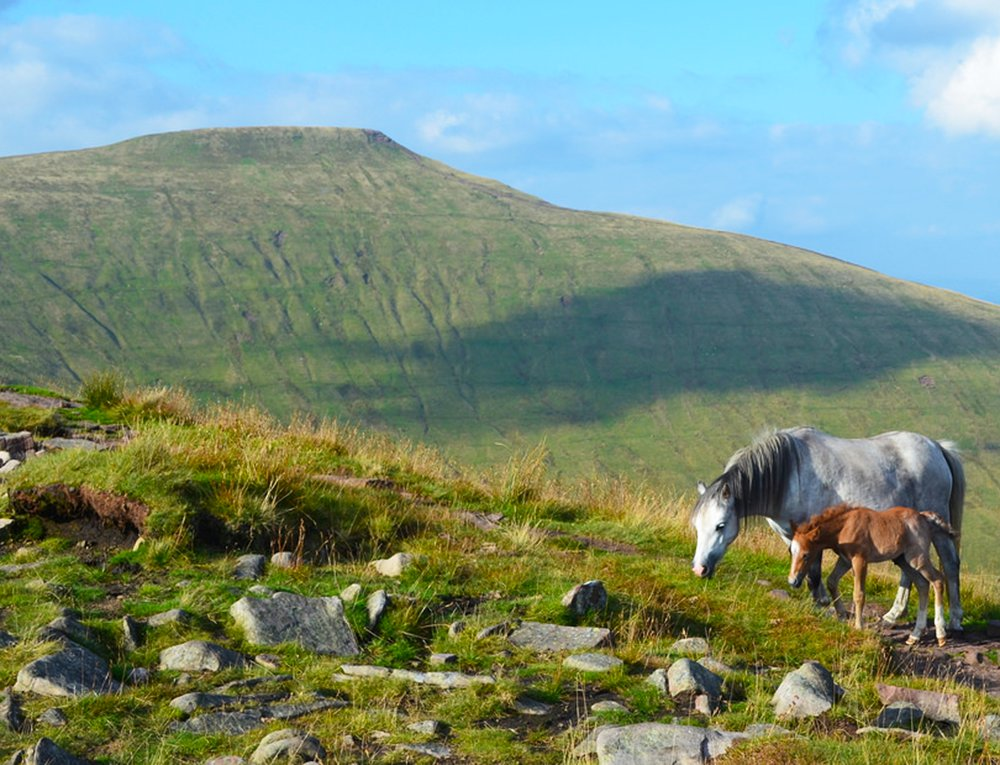 Easter Hiking and Yoga Retreat in Brecon Beacons, Wales