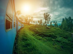 sri lanka train tea plantations