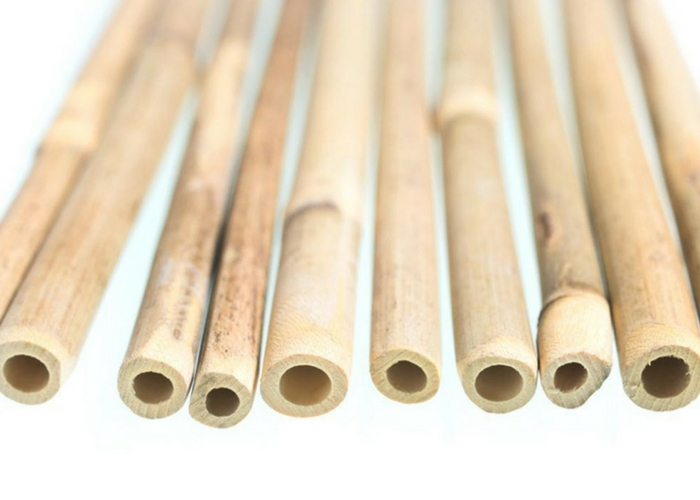 bamboo straws to save the planet