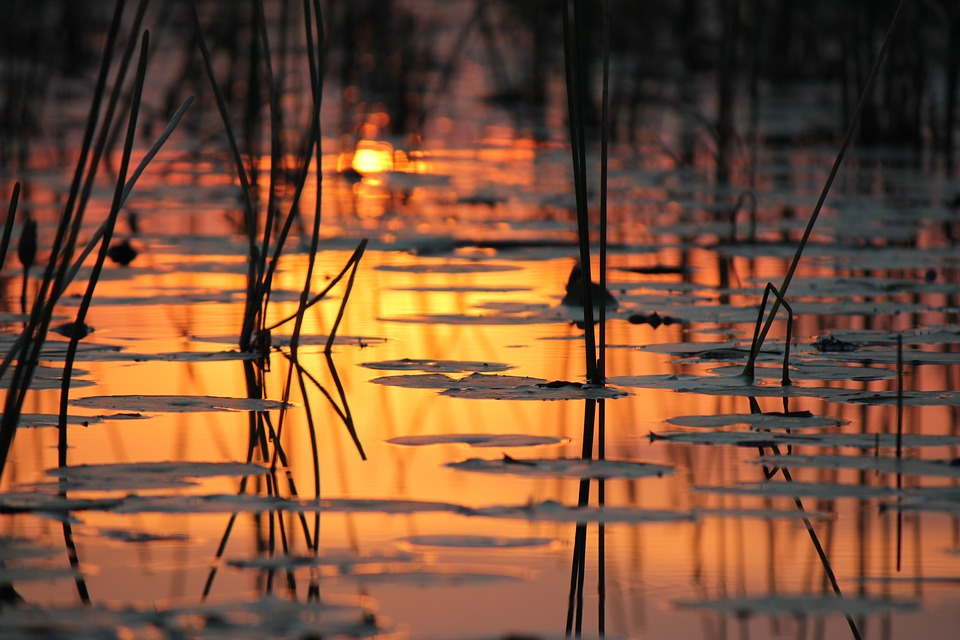 sunset on water okavango delta botswana