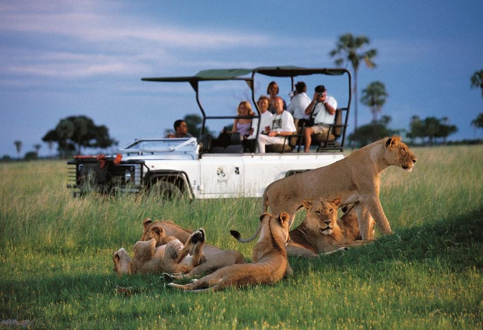 game drive in vehicle safari and yoga holiday