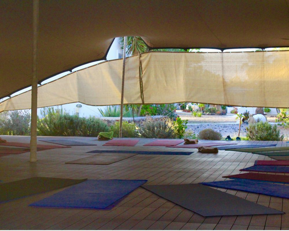 yoga space yoga mats