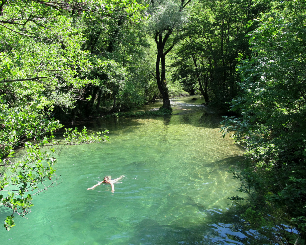 Swimmer in water surrounded by trees