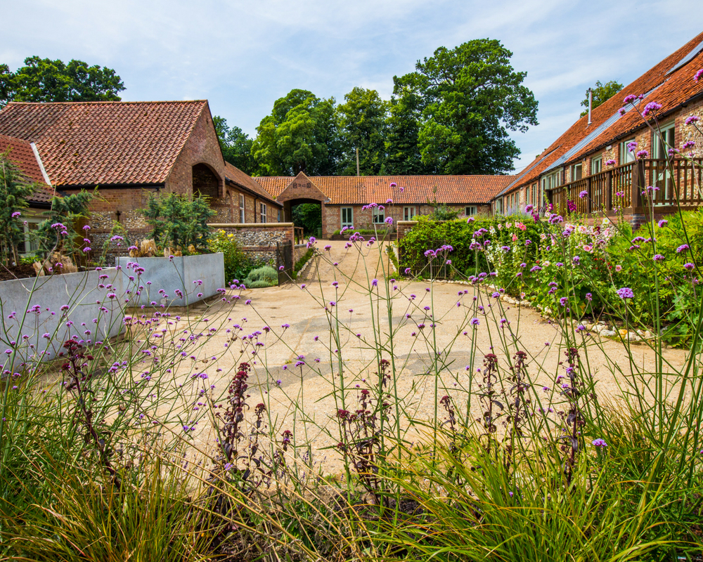 Yoga retreat outbuildings and flowering verbena - easter yoga retreat