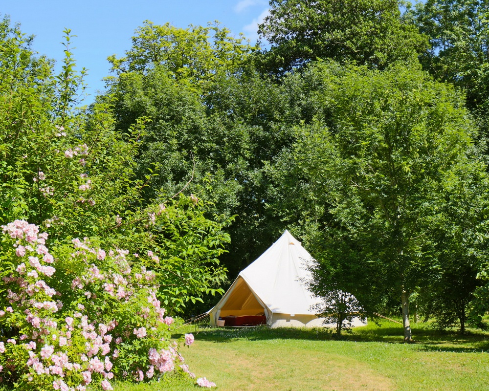 Bell tent amongst the trees