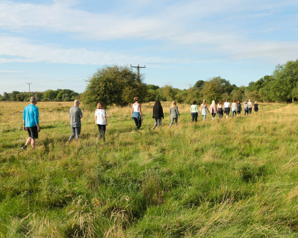 Line of walkers across field summer yoga retreat Thrupp