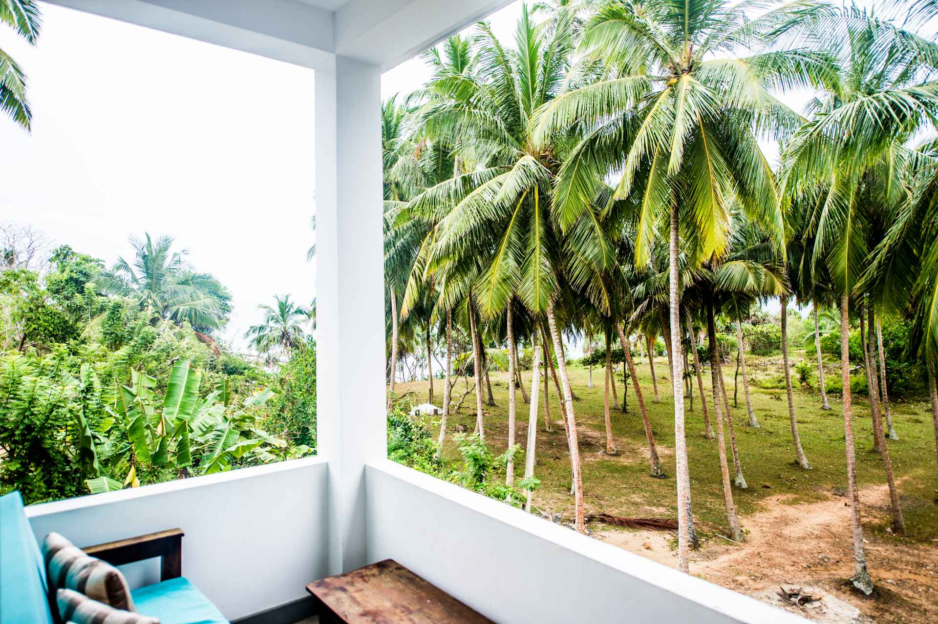 Sri-Lanka-Jasper-house-room-veiw-explosed-palm