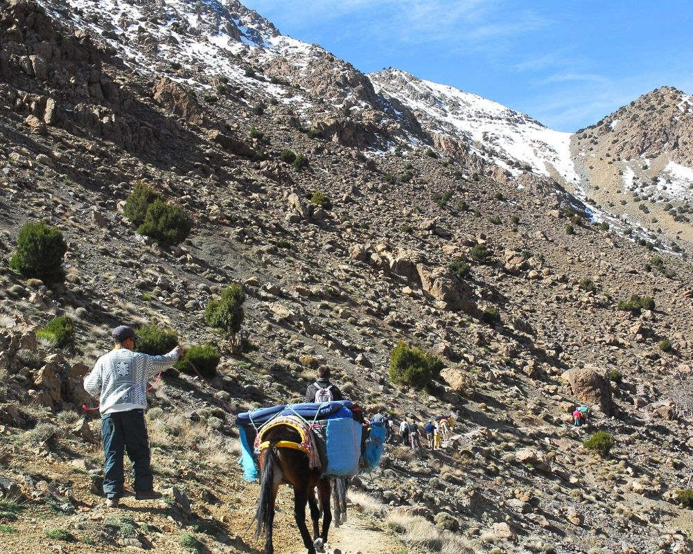 guided hike in atlas mountains morocco