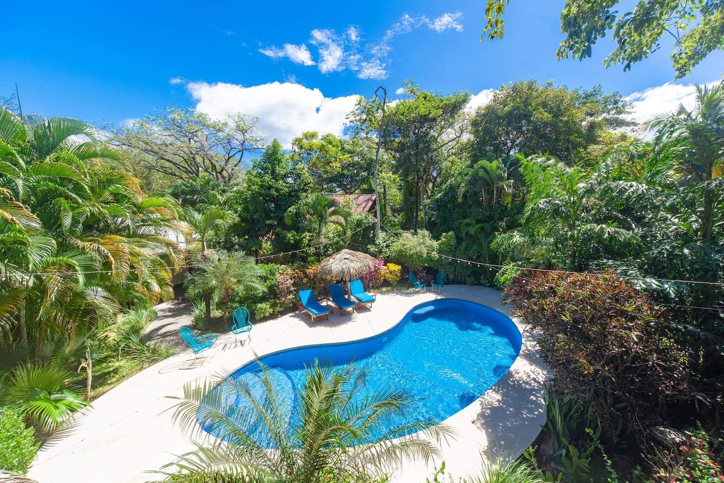 pool view from top of rancho and tropical garden around - yoga holiday costa rica