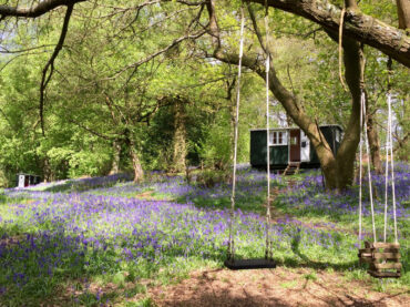 shepherds hut in woodland with bluebells and rope swing